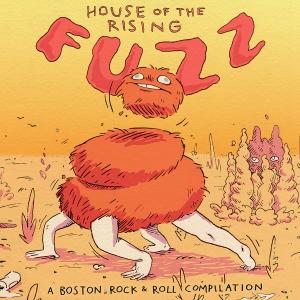 Fuzz Cover